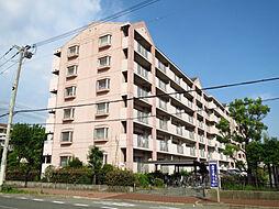 アメニティコート甲子園II[3階]の外観