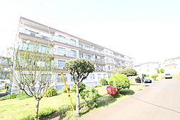 ・・・長津田団地7号棟・・・
