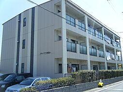 愛知県知多市新舞子東町1丁目の賃貸マンションの外観