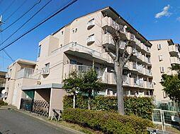 ネオ・アーバン武蔵藤沢 〜角部屋・陽当良好〜