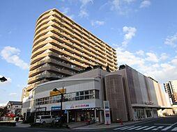 ハーモニア新町[8階]の外観