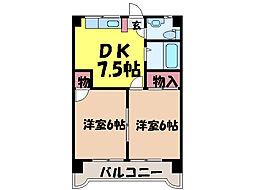 愛媛県松山市愛光町の賃貸マンションの間取り