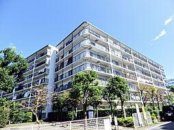 ハイラーク横浜白山
