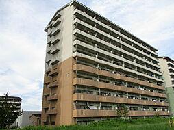 URアーバンラフレ小幡6号棟[4階]の外観