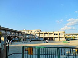 岡崎市立矢作東小学校 275m