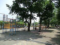 周辺環境:小泉公園