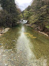 大自然の緑豊かな環境