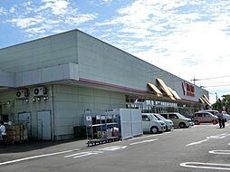 [一戸建] 埼玉県鴻巣市滝馬室 の賃貸【/】の外観