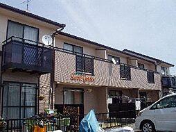 [テラスハウス] 愛知県安城市新田町 の賃貸【/】の外観