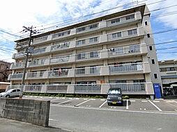 小堺ビル[3階]の外観
