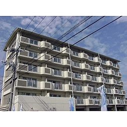 奈良県橿原市四分町の賃貸マンションの外観