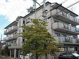 京阪本線 西三荘駅 徒歩19分の賃貸マンション