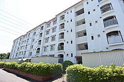 西武狭山台ハイツV号 103号室