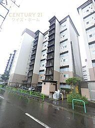 狛江ハイタウン2号棟