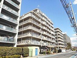 シンエーハイツ戸田
