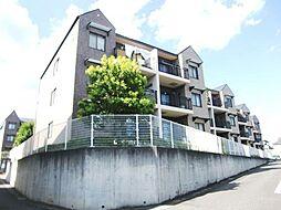埼玉県さいたま市見沼区御蔵の賃貸マンションの外観
