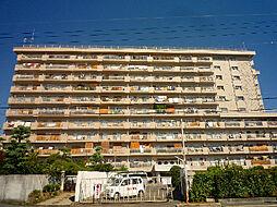 シャンボール茨木[309号室]の外観