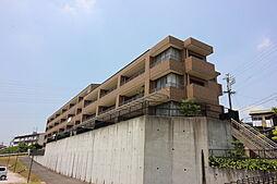 リビオ巽ヶ丘