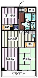 埼玉県さいたま市南区白幡6丁目の賃貸マンションの間取り
