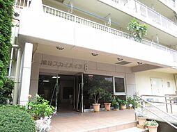 越谷スカイハイツB棟 B 211
