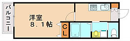 ティーガー新和町[1階]の間取り