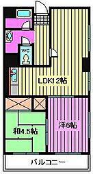 三栄わらびハイツ[7階]の間取り