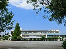 武蔵野市立第四小学校まで429m
