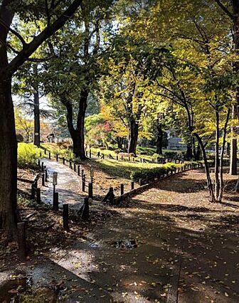 【公園】都立戸...