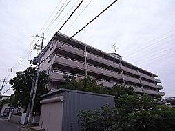 ネオシティ道明寺[4階]の外観