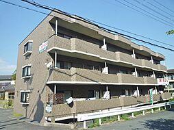 ガーデンハウス石山寺[300号室号室]の外観