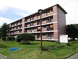 愛知県名古屋市千種区光が丘の賃貸マンションの外観