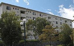 金剛第三住宅213棟