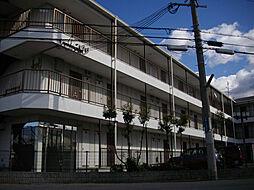 ハイツアルカディア[310号室]の外観