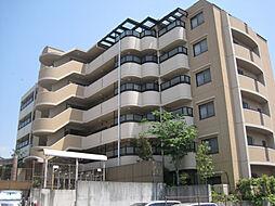 夙川松園町アーバンライフ[503号室]の外観