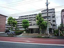 ネオステージ羽村公園通り 1階