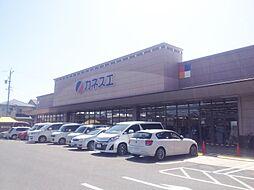カネスエ(新生店)まで900m