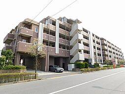 アンビシャス久米川 〜最上階・南西向き〜
