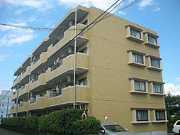 神奈川県平塚市四之宮6丁目の賃貸マンションの外観