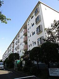新桜ヶ丘団地5号棟