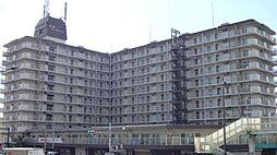 西大路ガーデンハイツ[7階]の外観