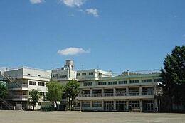 小学校東小学校まで1217m