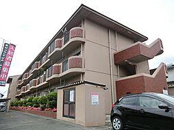 並木サニーハイツ[3階]の外観