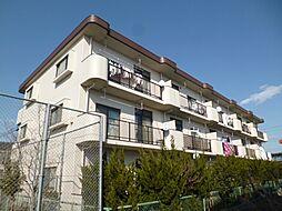 東京都昭島市大神町4丁目の賃貸マンションの外観