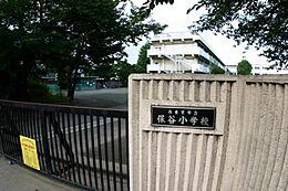 西東京市立保谷小学校 560m