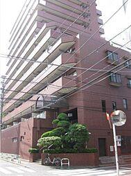 シティハウスノヴァ[11階]の外観
