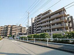 聖蹟桜ヶ丘和田ハウスW棟 ペット可 角部屋