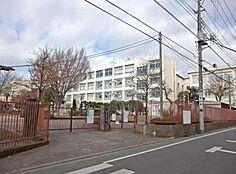 小学校小金井市立 小金井第二小学校まで537m