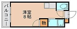 ボナミ博多[5階]の間取り