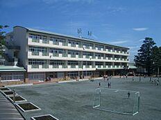 狛江市立 緑野小学校まで617m