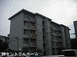 新金岡第7次住宅[4階]の外観